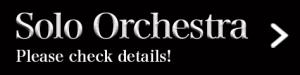 Profile Solo Orchestra en