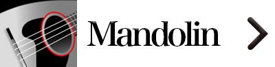 Top Mandolin en